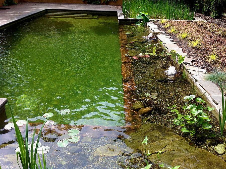 Baignade au naturel - Peut on se baigner pendant la filtration de la piscine ...